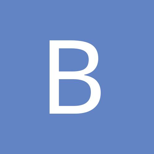 bridlock